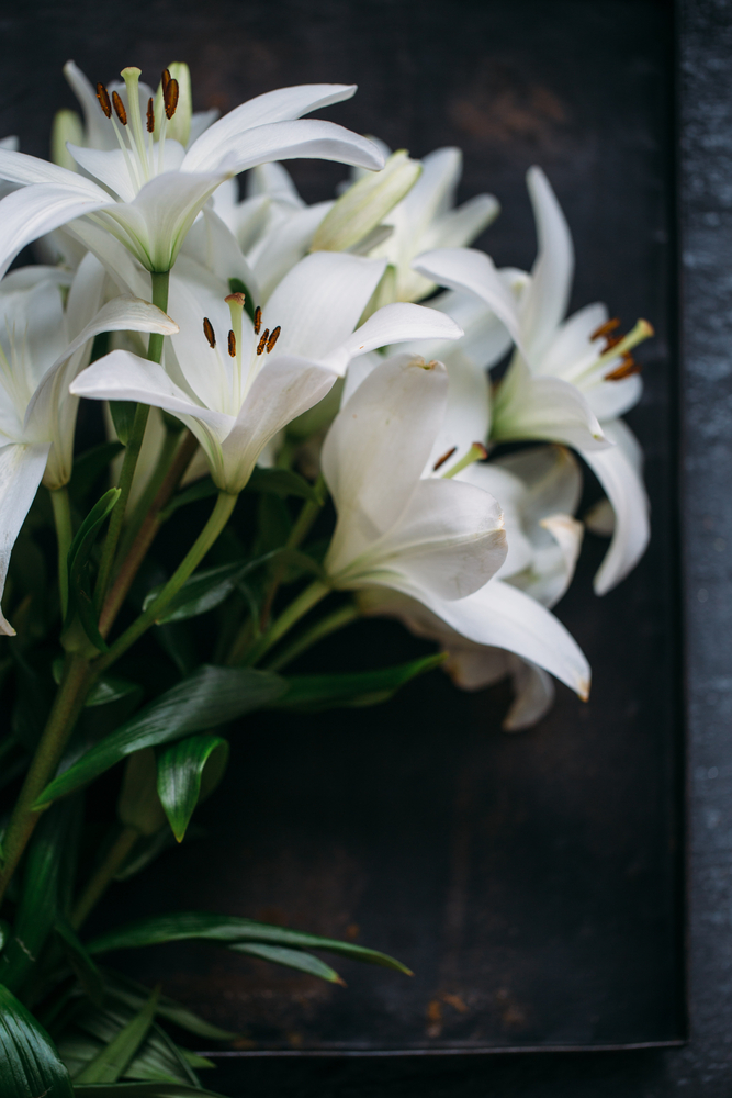 White flowers, especially lilies, make for a great traditional funeral arrangement. (Shutterstock)