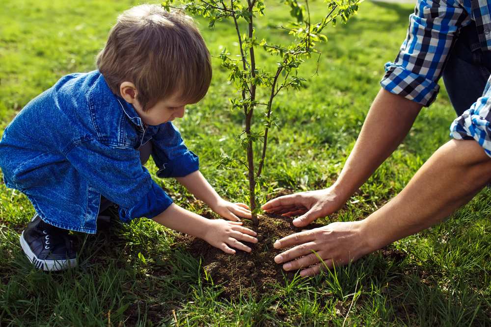 Let children cope with their grief, their way. Planting a tree in a special place can be a way for them to honor the person they miss. (Shutterstock)